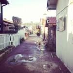 Le Canon, village pécheur au Cap ferret